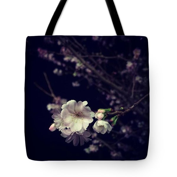 Christmas Cherry Bloom. 🎄🍒🌸 Tote Bag