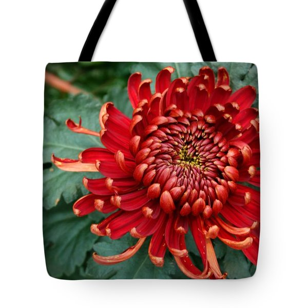 Christmas Chrysanthemum Tote Bag
