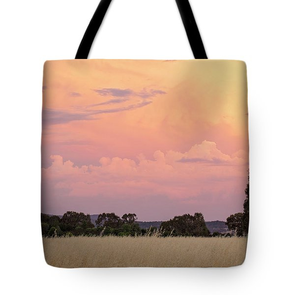 Tote Bag featuring the photograph Christmas Eve In Australia by Linda Lees