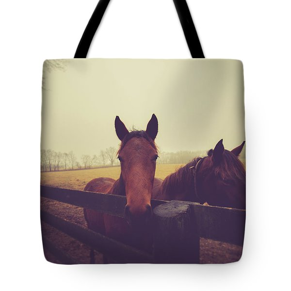 Tote Bag featuring the photograph Christmas Horses by Shane Holsclaw