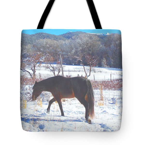 Tote Bag featuring the photograph Christmas Roan El Valle I by Anastasia Savage Ealy