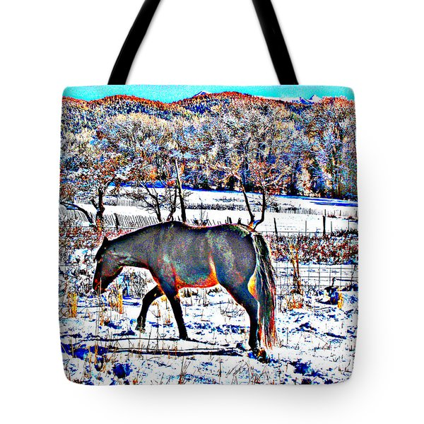 Tote Bag featuring the photograph Christmas Roan El Valle II by Anastasia Savage Ealy