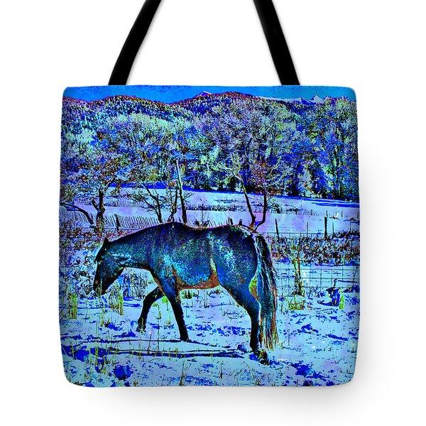 Christmas Roan El Valle IIi Tote Bag
