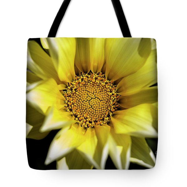 Tote Bag featuring the photograph Chrysanthos by Linda Lees