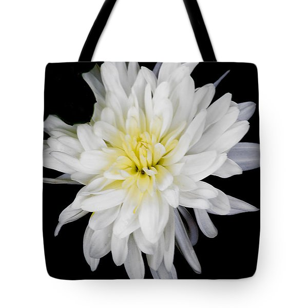 Tote Bag featuring the photograph Chrysanthemum Bloom by Richard J Thompson
