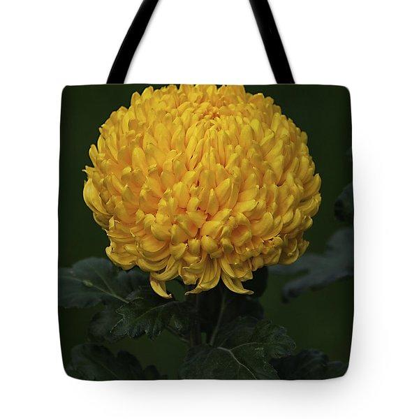 Chrysanthemum 'derek Bircumshaw' Tote Bag