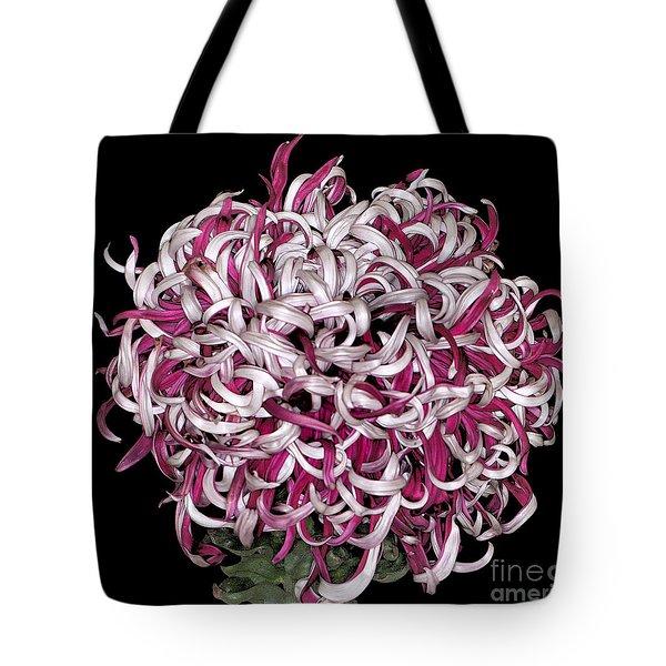 Chrysanthemum 'lili Gallon' Tote Bag
