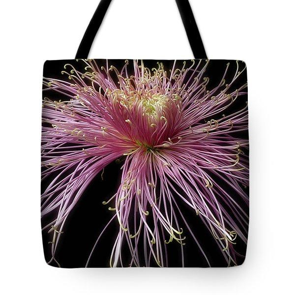 Chrysanthemum 'mystic' Tote Bag