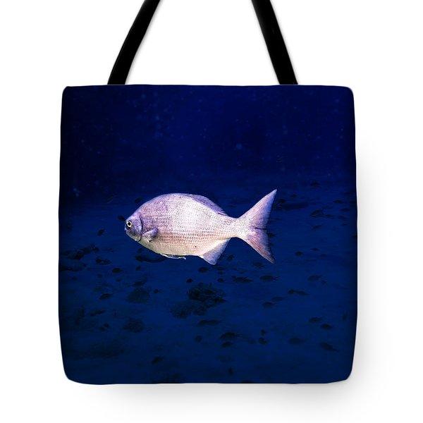 Chub Tote Bag