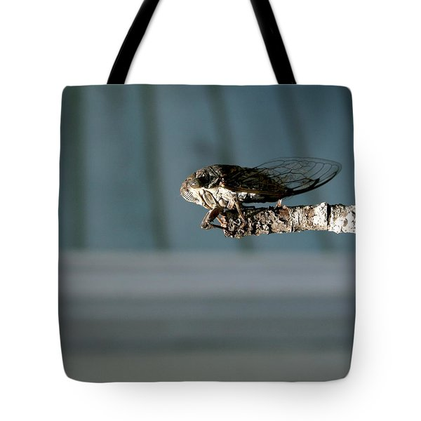 Cicada Tote Bag by Cathy Harper