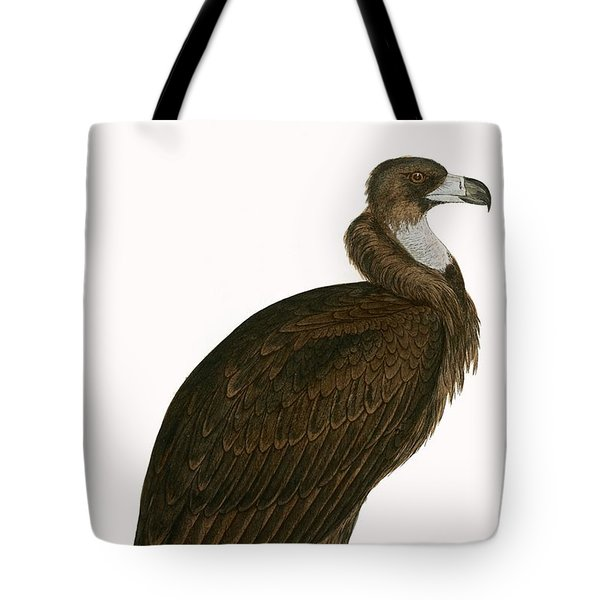 Cinereous Vulture Tote Bag by English School