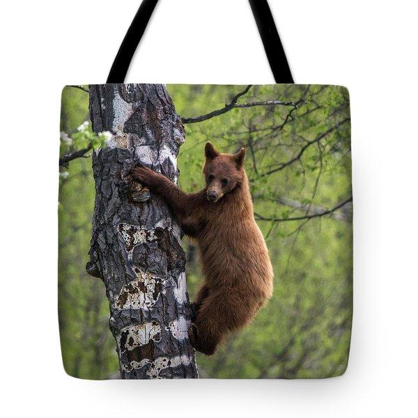 Cinnamon Climb Tote Bag