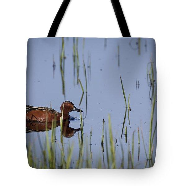 Cinnamon Teal Adult Male Tote Bag