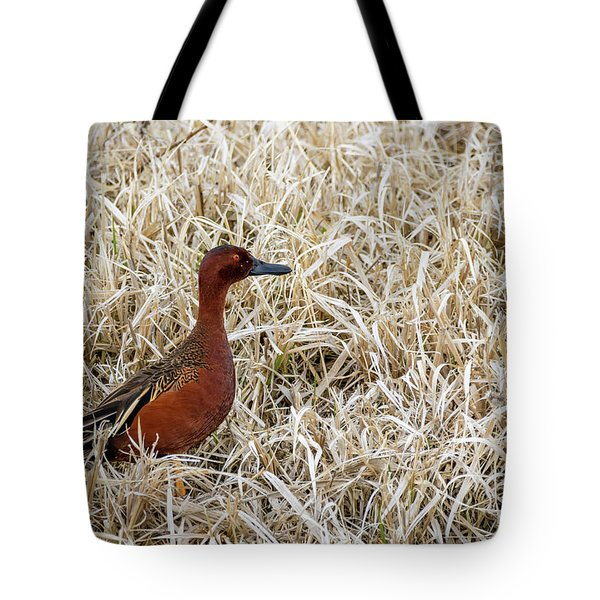 Cinnamon Teal Tote Bag