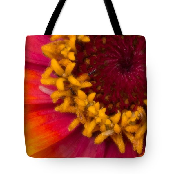 Tote Bag featuring the photograph Circle Of Life by Cathy Donohoue