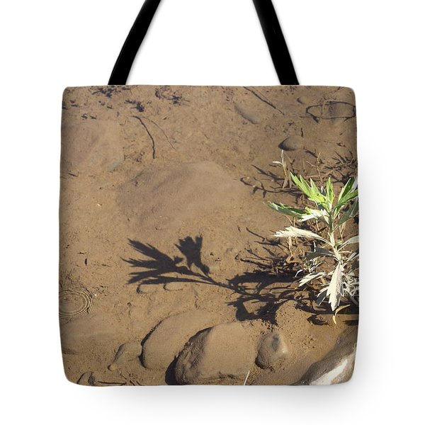 Tote Bag featuring the photograph Circle Shadow Plant by Marie Neder