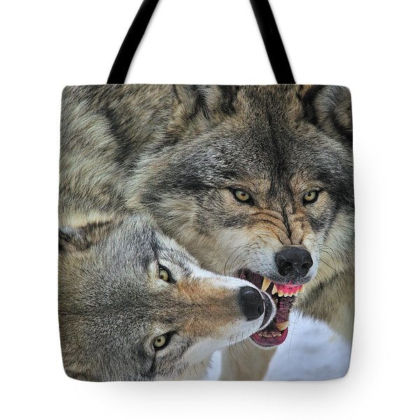 Tote Bag featuring the photograph Circle by Tony Beck