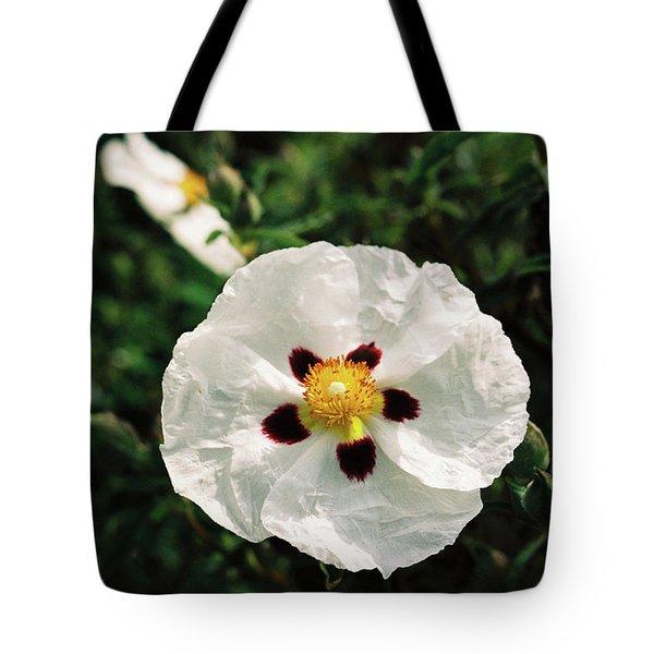 Cistus Cultivar Tote Bag