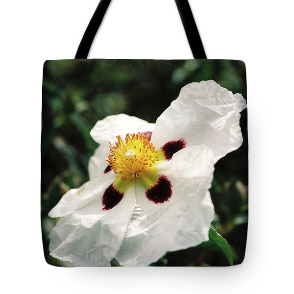 Cistus Rock Rose Side View Tote Bag