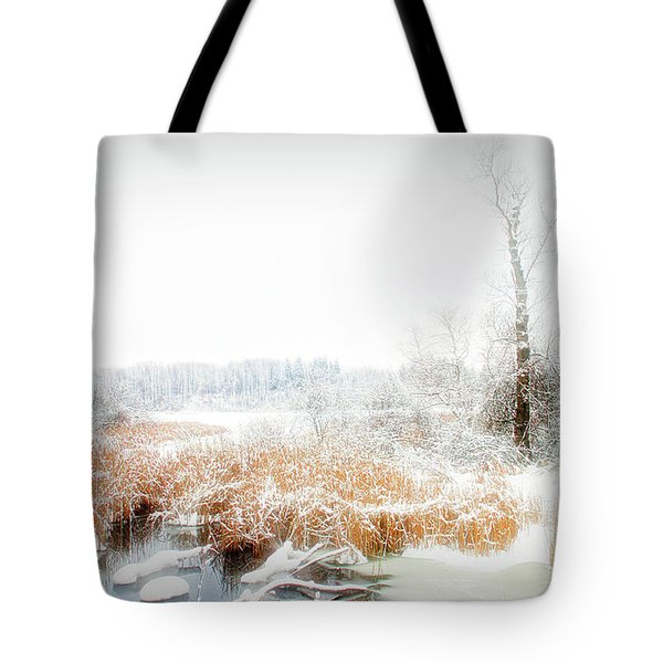 Tote Bag featuring the photograph City Flare Winters Glory by Aimee L Maher Photography and Art Visit ALMGallerydotcom