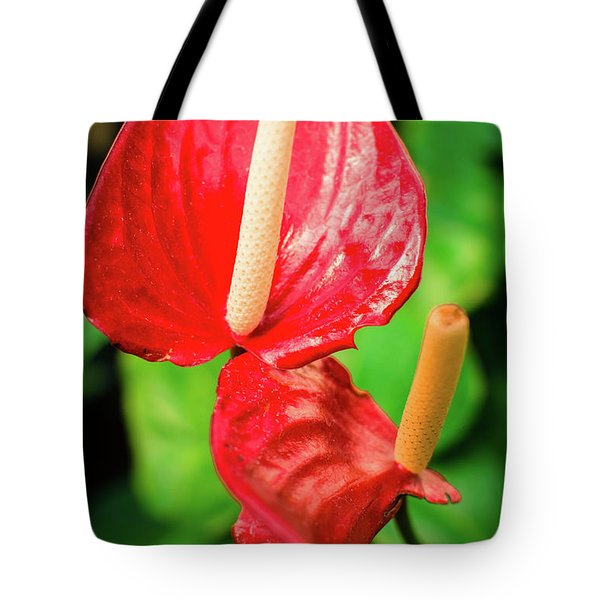 City Garden Flowers Tote Bag