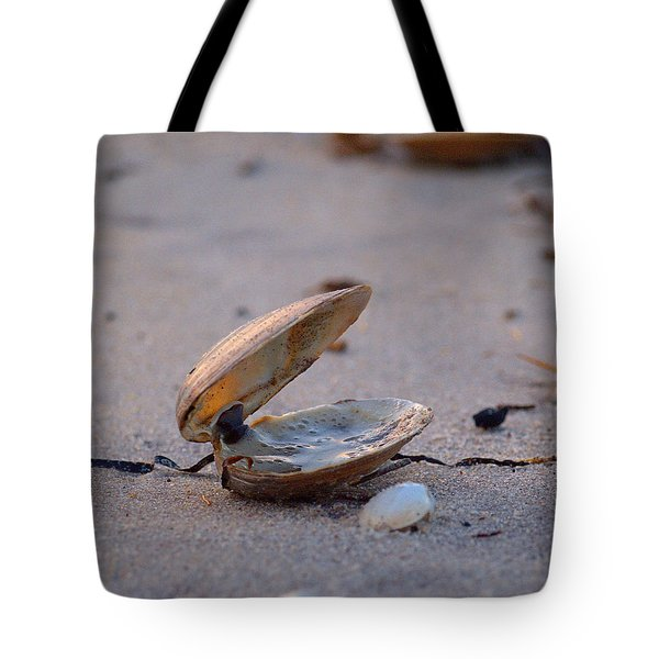 Clam I Tote Bag