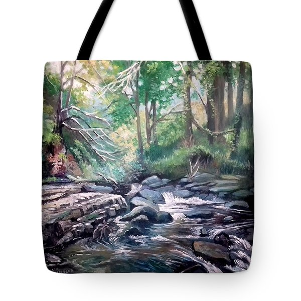 Clare Glens ,co Tipparay Ireland Tote Bag by Paul Weerasekera
