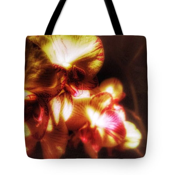 Tote Bag featuring the photograph Clarissa by Isabella F Abbie Shores FRSA