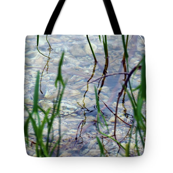 Tote Bag featuring the photograph Clarity by Sally Sperry