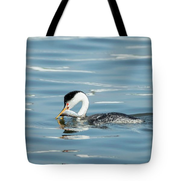 Tote Bag featuring the photograph Clarks Grebe by Everet Regal