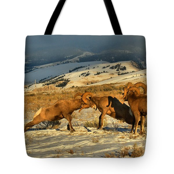Grand Teton Bighorn Brawlers Tote Bag
