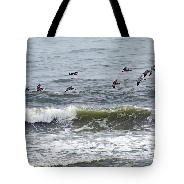 Classic Brown Pelicans Tote Bag by Betsy Knapp