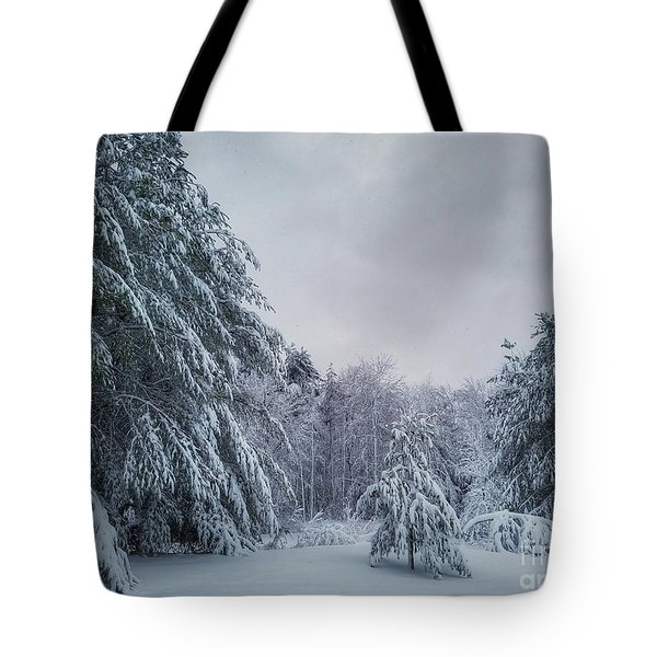 Classic Winter Scene In New England  Tote Bag