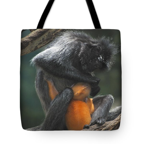 Tote Bag featuring the photograph Cleaning Baby by Richard Bryce and Family