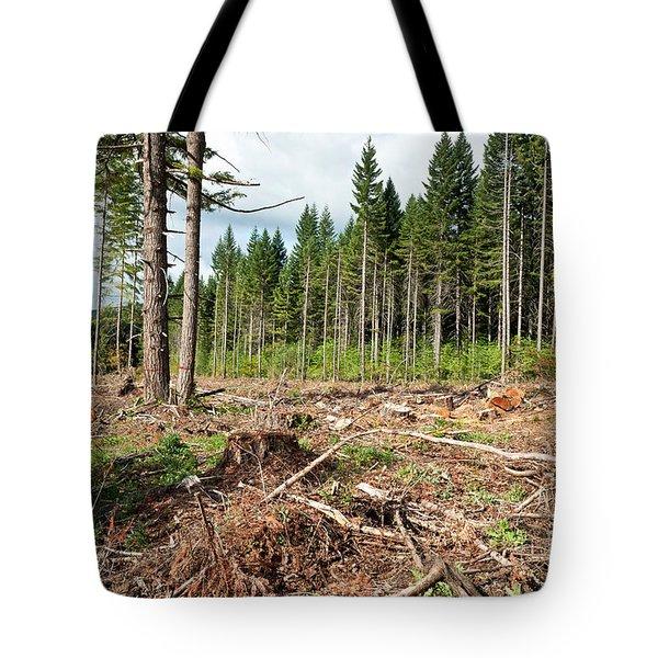 Clearcut, Douglas Fir Forest Tote Bag