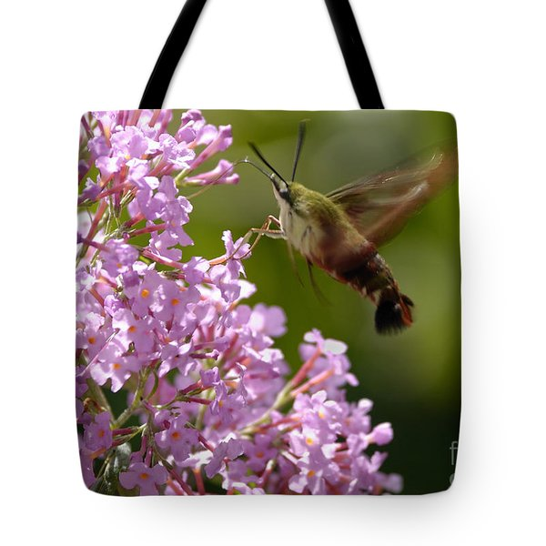 Clearwing Pink Tote Bag by Randy Bodkins