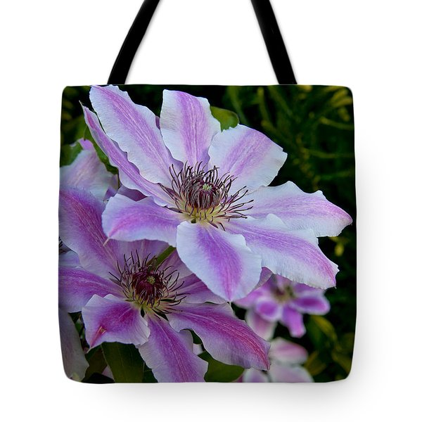 Clematis Flower Tote Bag