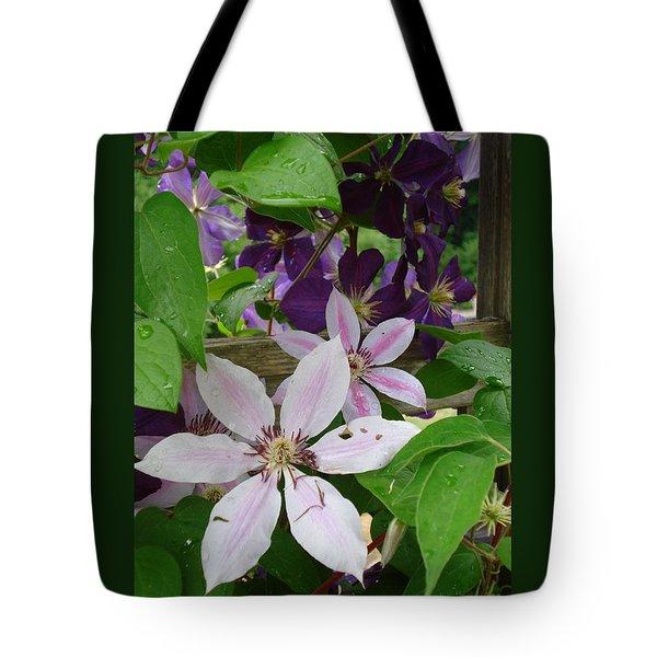 Clematis-ii Tote Bag