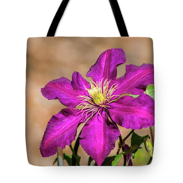 Tote Bag featuring the photograph Clematis by Lynne Jenkins