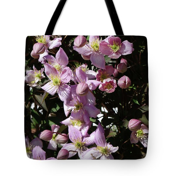 Clematis Montana  In Full Bloom Tote Bag