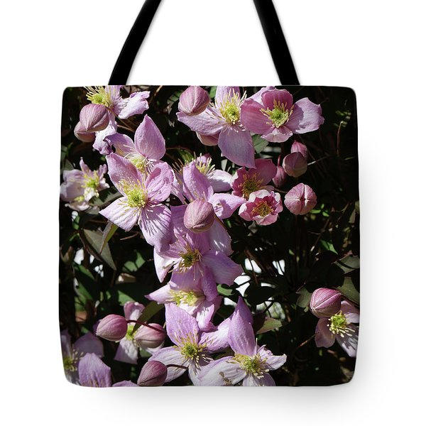 Clematis Montana  In Full Bloom Tote Bag