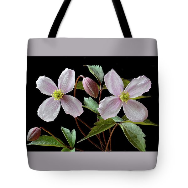 Tote Bag featuring the photograph Clematis Montana Rubens by Terence Davis
