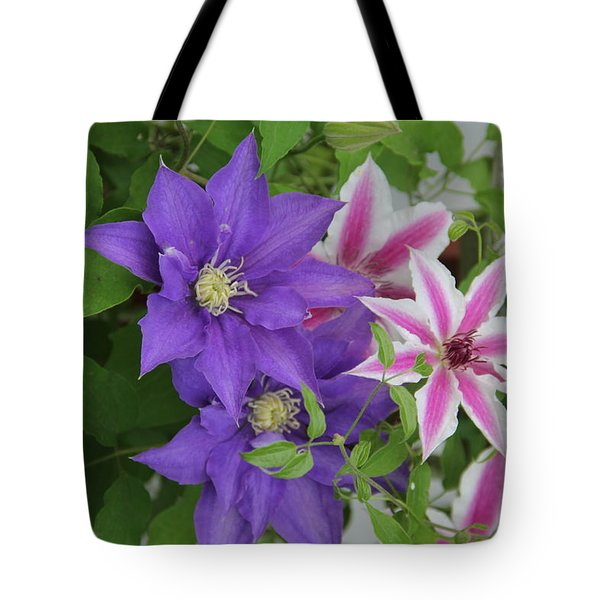 Clematis Purple And Pink White Tote Bag