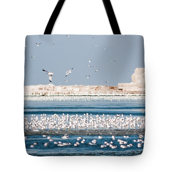 Cleveland Lighthouse In Ice  Tote Bag