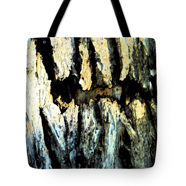 Tote Bag featuring the photograph Cliff Dwellings by Lenore Senior