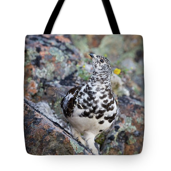 Cliffside Showoff Tote Bag