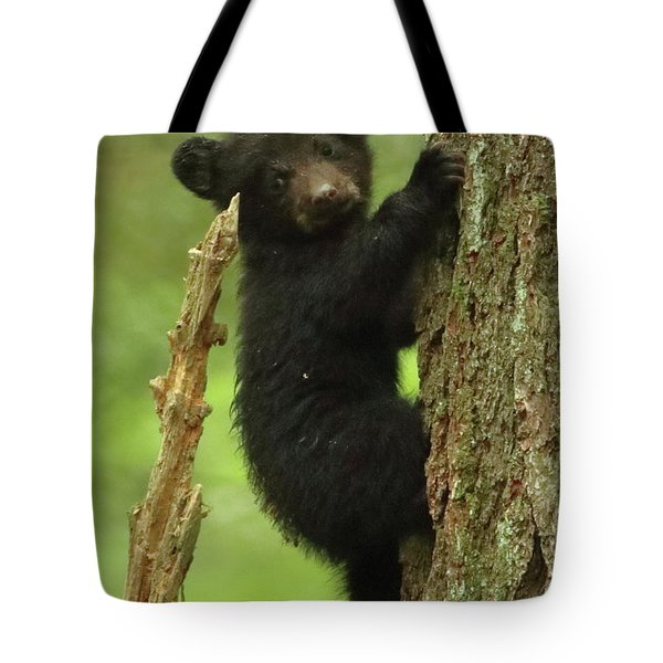 Tote Bag featuring the photograph Climbing 101 by Coby Cooper
