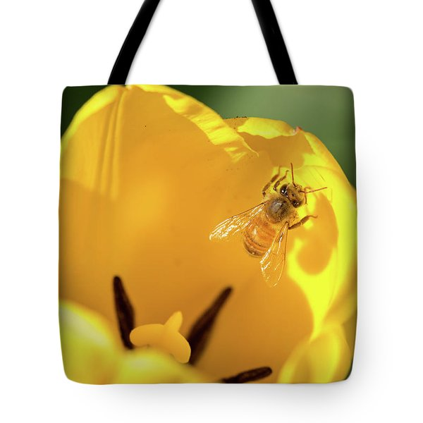 Tote Bag featuring the photograph Climbing Out by Brian Hale