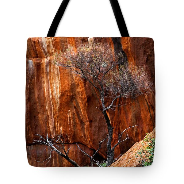 Clinging To Life Tote Bag by Mike  Dawson