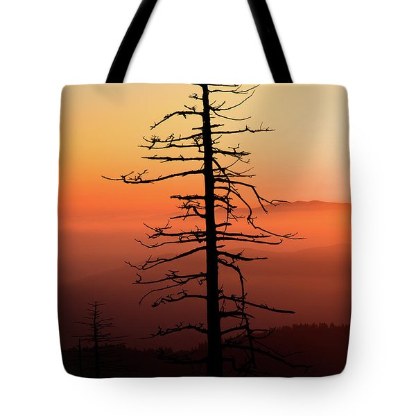 Tote Bag featuring the photograph Clingman's Dome Sunrise by Douglas Stucky